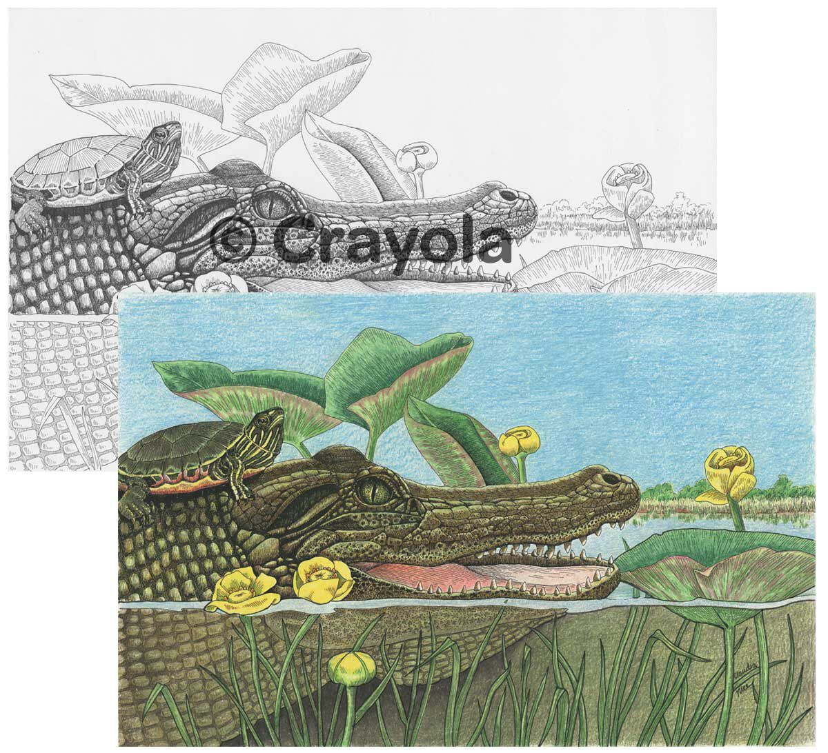 color escapes coloring kit national parks crayola