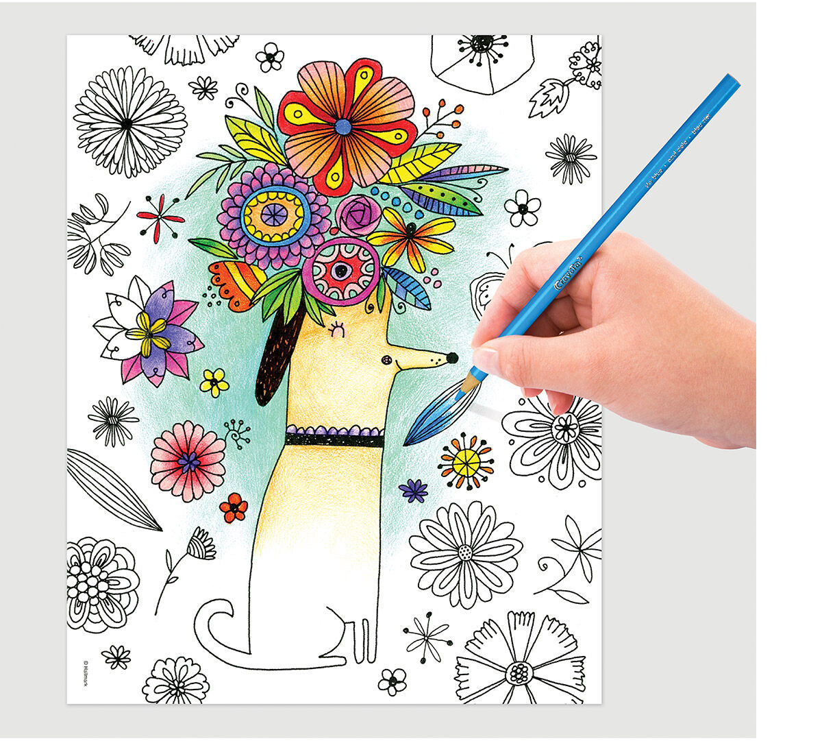 Crayola Whimsical Escapes Adult