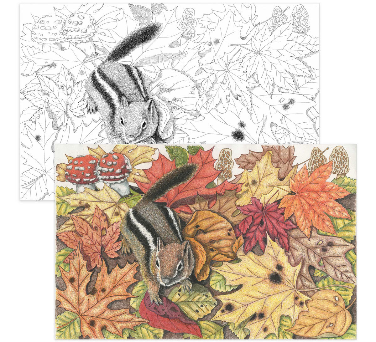 Color Escapes Adult Coloring Kit, Garden - Crayola