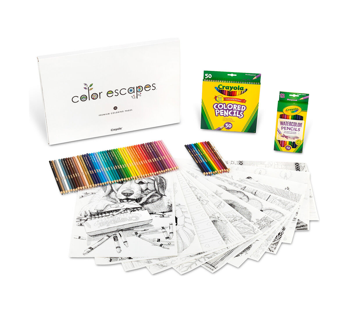 Color Escapes Adult Coloring Kit, Paw Prints | Crayola