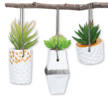Signature DIY Hanging Planter Craft Kit