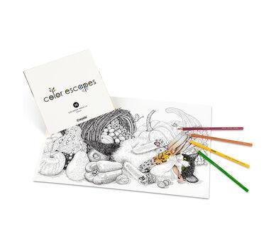 Color Escapes Adult Coloring Kit, Paw Prints