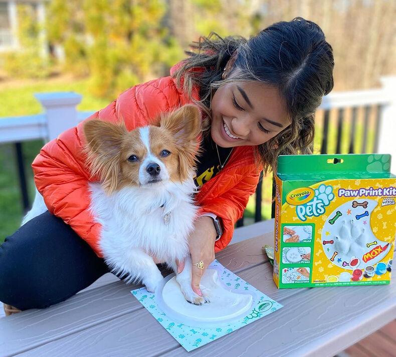Circle Craft Kit Crayola Pets Paw Print Keepsake Kit Gifts for Pet Lovers