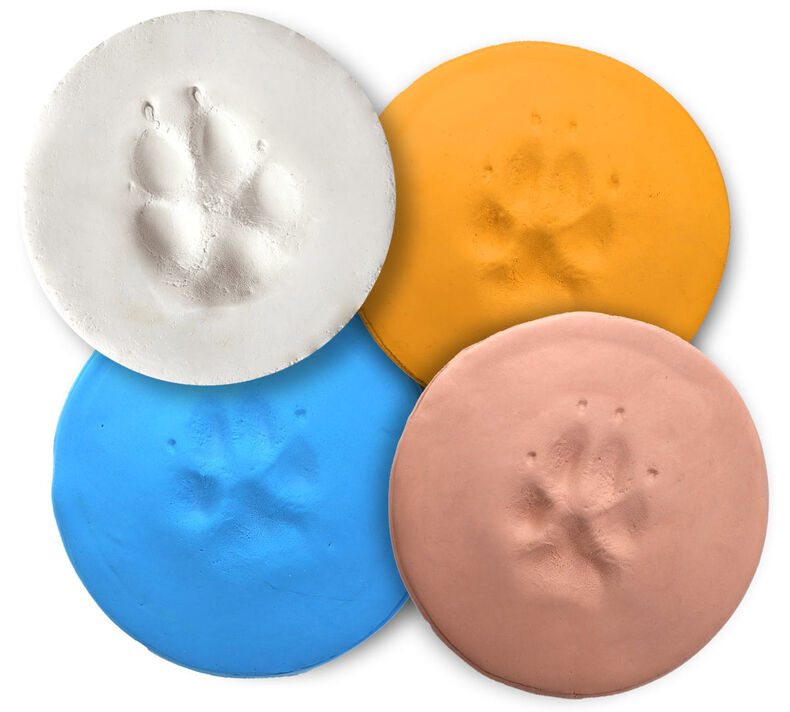 Crayola Pets Paw Print Circle Keepsake Kit with Extra Art Supplies
