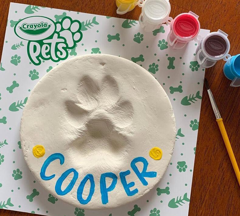 Crayola Pets Paw Print Keepsake Kit, Circle
