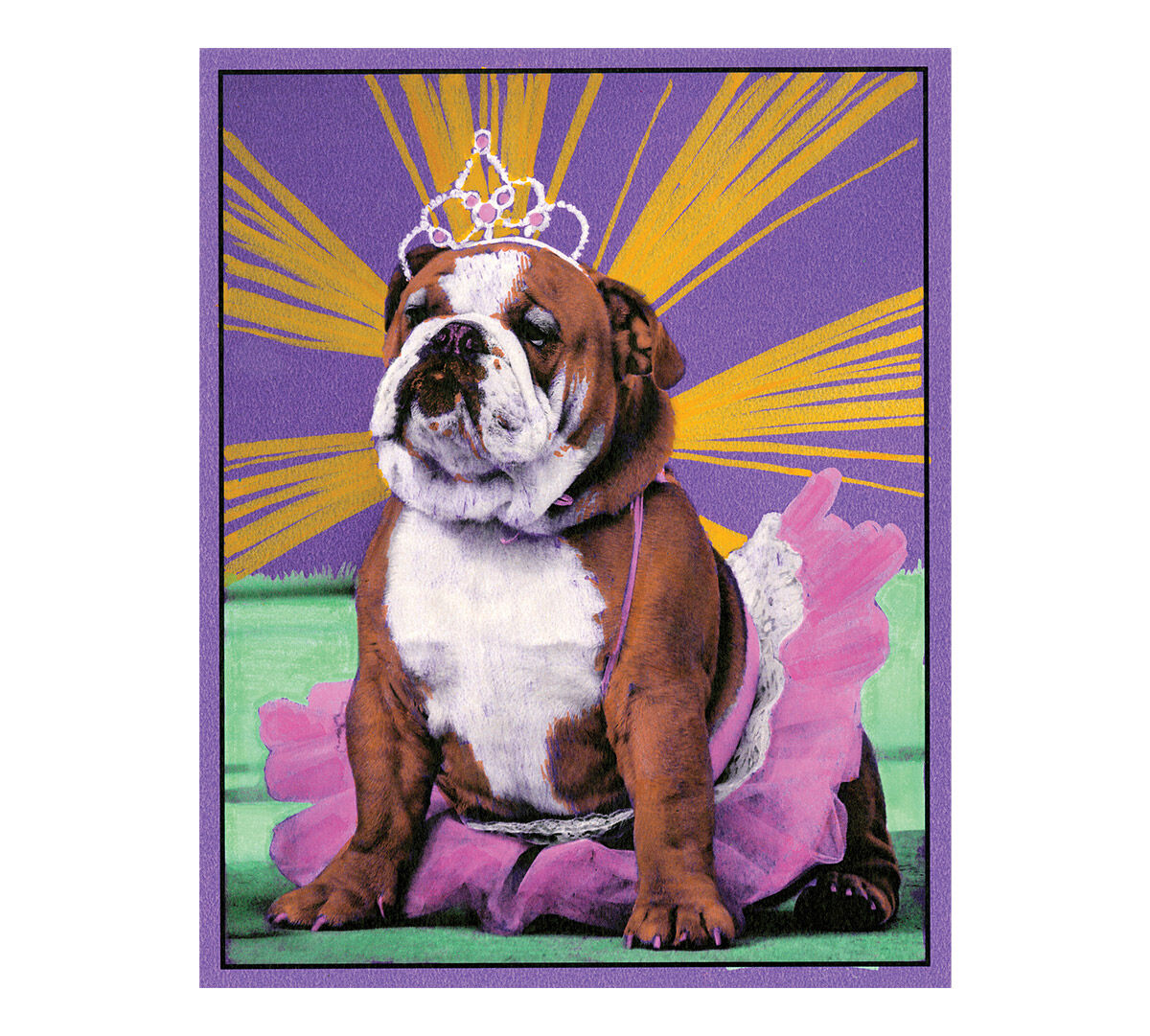 Crayola Pop Art Pets Coloring Set 5 Pop Art Markers 8